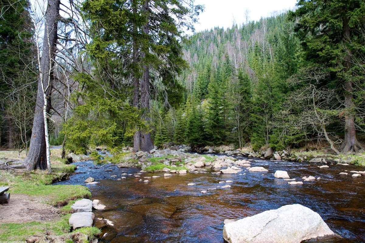 Natur tanken in schöner Umgebung
