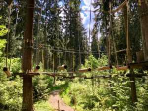 Kletterwald Greifensteine - trau Dich
