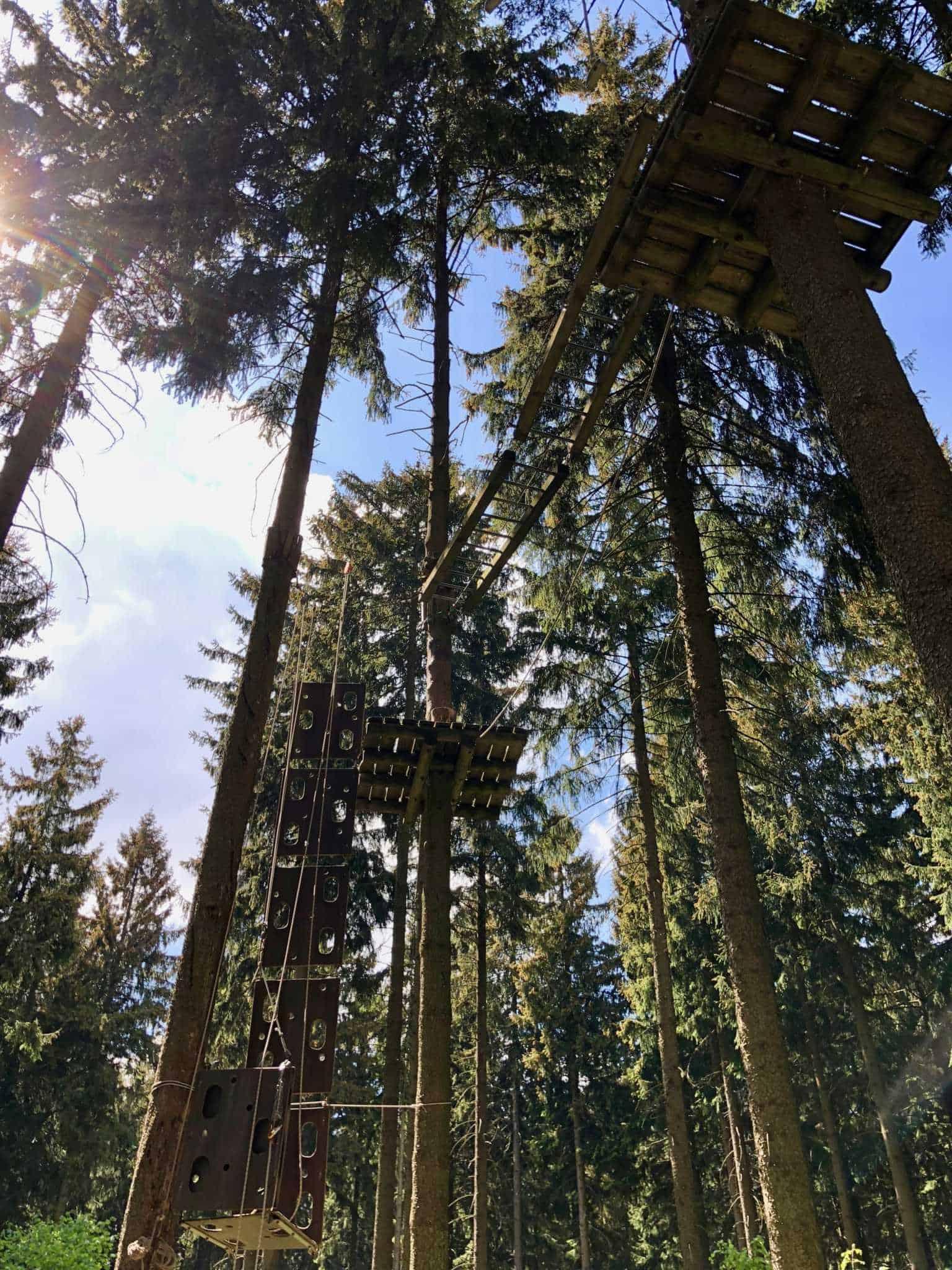 Kletterwald Greifensteine - Deinen Adrenalin Kick an den Greifensteinen