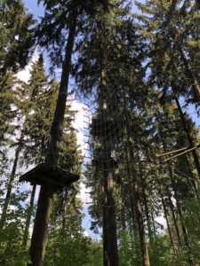 Kletterwald Greifensteine - hoch hinaus